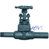 Forged Carbon Steel Gas Solid Gate Valve With Nipples