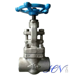 Forged SS 304 Socket Welding Ends Globe Valve
