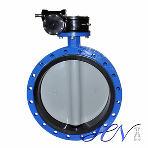 Resilient Seat Cast Iron Flanged Gear Operated Centric Butterfly Valve